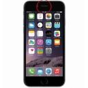 Réparation Haut Parleur interne iPhone 6