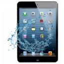 Désoxydation iPad Mini 2