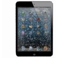 Réparation Vitre Avant iPad Mini